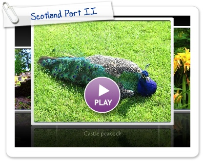 Click to play this Smilebox slideshow: Scotland Part II