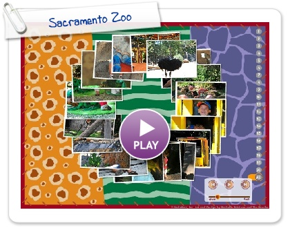 Click to play this Smilebox slideshow: Sacramento Zoo