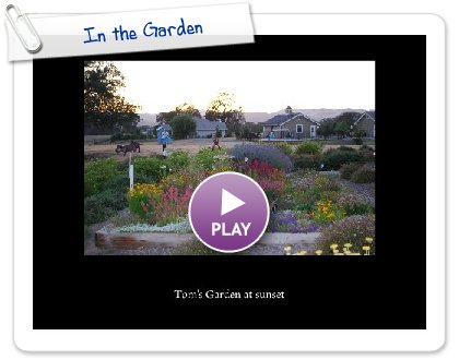 Click to play this Smilebox slideshow: In the Garden