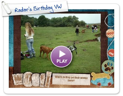Click to play this Smilebox slideshow: Radar's Birthday VW