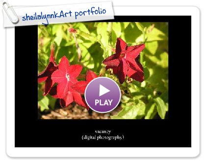 Click to play this Smilebox slideshow: sheilalynnkArt portfolio