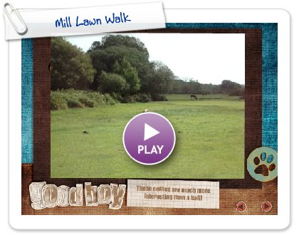 Click to play this Smilebox slideshow: Mill Lawn Walk