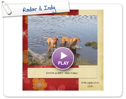 Click to play this Smilebox scrapbook: Radar & Indy