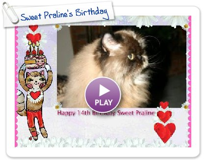 Click to play this Smilebox slideshow: Sweet Praline's Birthday