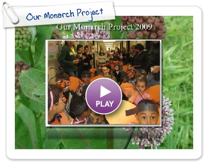 Click to play this Smilebox slideshow: Our Monarch Project