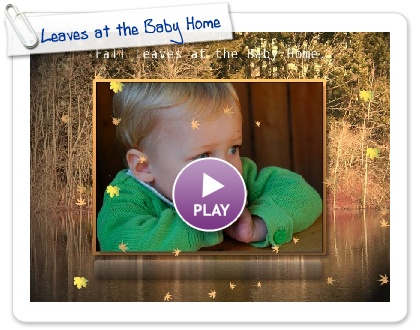 Click to play this Smilebox slideshow: Leaves at the Baby Home