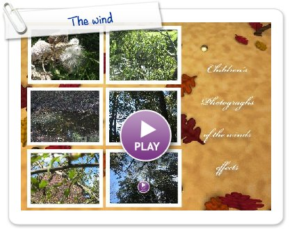Click to play this Smilebox postcard: The wind
