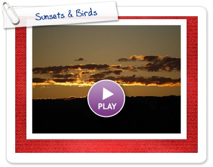 Click to play this Smilebox postcard: Sunsets & Birds