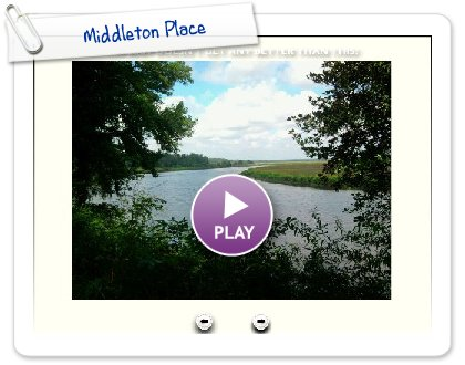 Click to play this Smilebox slideshow: Middleton Place