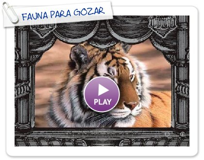 Click to play this Smilebox slideshow: FAUNA PARA GOZAR