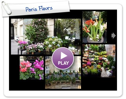 Click to play this Smilebox collage: Paris Fleurs