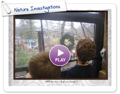 Click to play this Smilebox slideshow: Nature Investigations