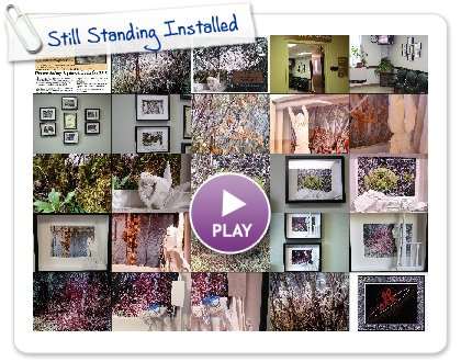Click to play this Smilebox slideshow: Still Standing Installed