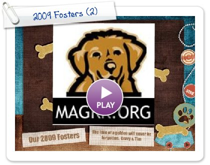 Click to play this Smilebox slideshow: 2009 Fosters
