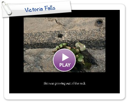 Click to play this Smilebox slideshow: Victoria Falls