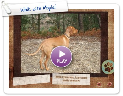 Click to play this Smilebox slideshow: Walk with Maple!