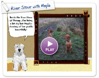 Click to play this Smilebox slideshow: River Stour with Maple