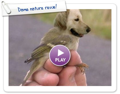 Click to play this Smilebox slideshow: Dame nature revue!