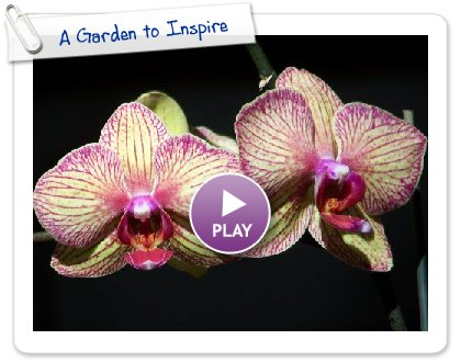 Click to play this Smilebox slideshow: A Garden to Inspire