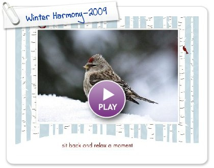 Click to play this Smilebox slideshow: Winter Harmony-2009