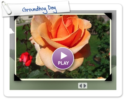 Click to play this Smilebox greeting: Groundhog Day