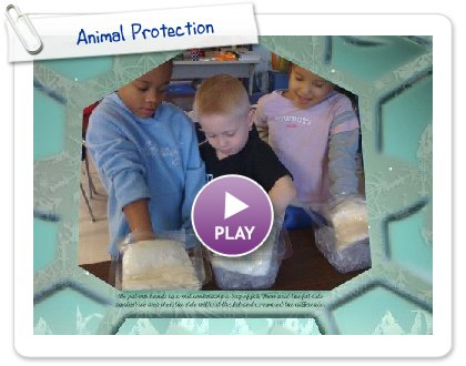 Click to play this Smilebox slideshow: Animal Protection