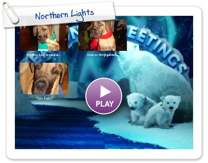 Click to play this Smilebox greeting: Northern Lights