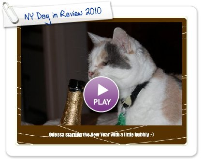 Click to play this Smilebox greeting: NY Day in Review 2010
