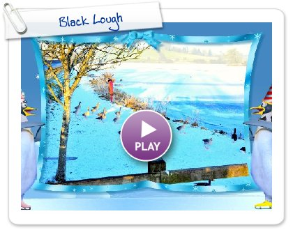 Click to play this Smilebox slideshow: Black Lough