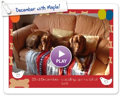 Click to play this Smilebox greeting: December with Maple!