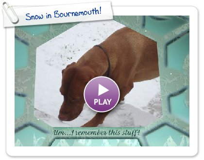 Click to play this Smilebox slideshow: Snow in Bournemouth!