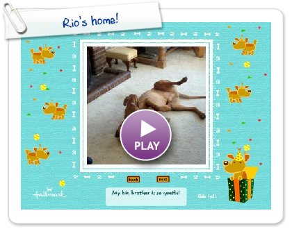 Click to play this Smilebox slideshow: Rio's home!