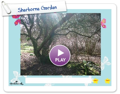 Click to play this Smilebox slideshow: Sherborne Garden