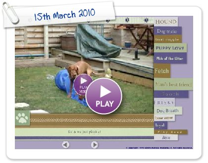 Click to play this Smilebox slideshow: 15th March 2010