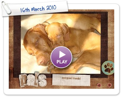 Click to play this Smilebox slideshow: 16th March 2010
