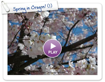 Click to play this Smilebox slideshow: Spring in Oregon!