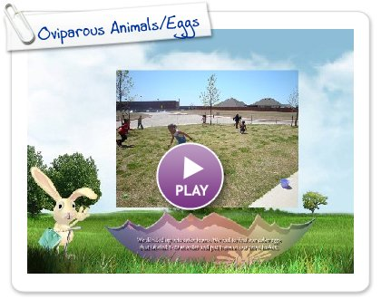 Click to play this Smilebox slideshow: Oviparous Animals/Eggs