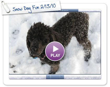 Click to play this Smilebox slideshow: Snow Day Fun 2/13/10