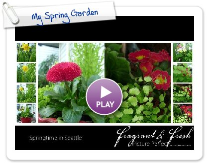 Click to play this Smilebox photobook: My Spring Garden
