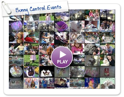 Click to play this Smilebox slideshow: Bunny Central Events
