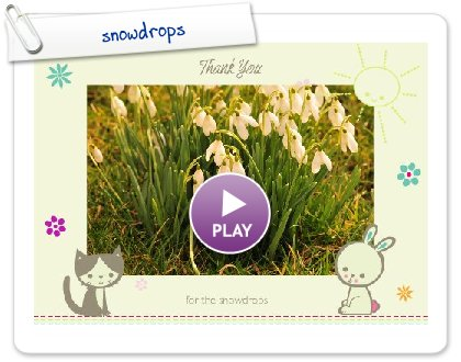 Click to play this Smilebox greeting: snowdrops