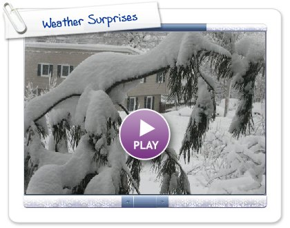 Click to play this Smilebox slideshow: Weather Surprises