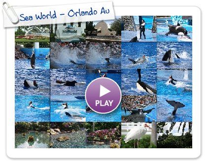 Click to play this Smilebox slideshow: Sea World - Orlando August 2008