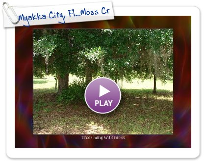 Click to play this Smilebox slideshow: Myakka City, Fl...Moss Creek Farm
