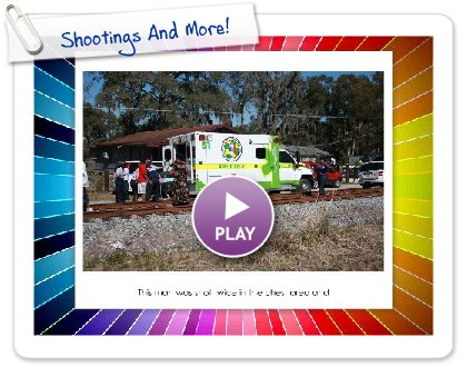 Click to play this Smilebox slideshow: Shootings And More!