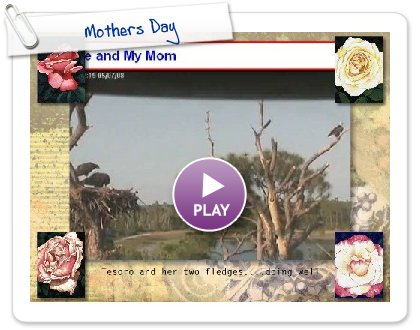 Click to play Mothers Day