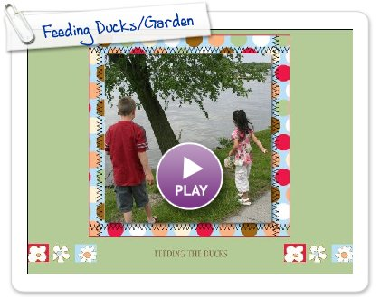 Click to play Feeding Ducks/Garden
