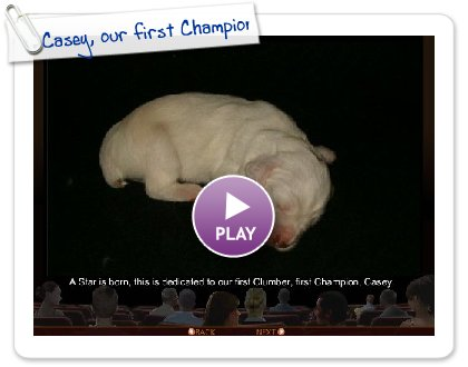 Click to play this Smilebox slideshow: Casey, our first Champion