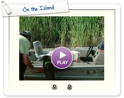 Click to play this Smilebox slideshow: On the Island