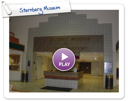 Click to play Sternberg Museum